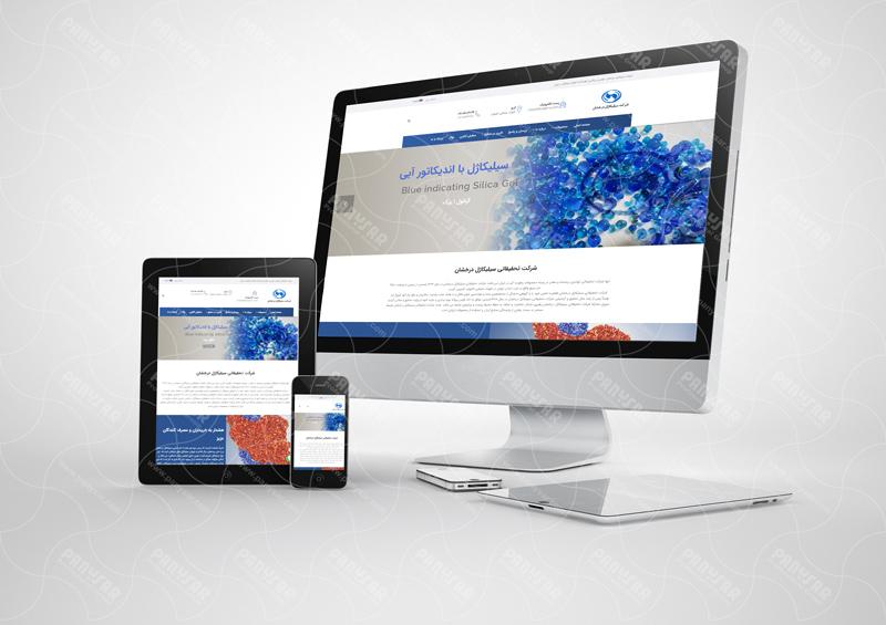 طراحی سایت سیلیکاژل